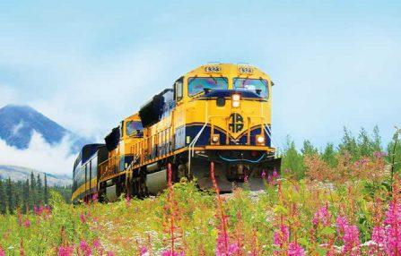 train driving through the land