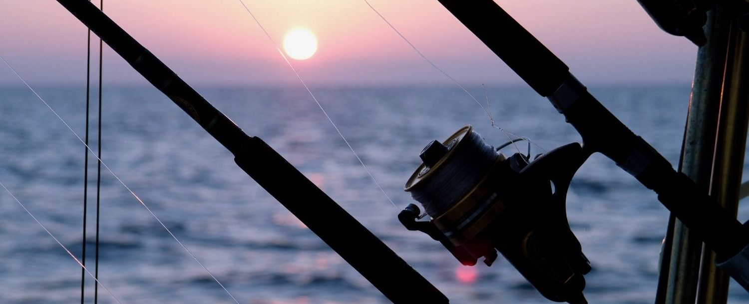 Fishing rod with sunset in the background.
