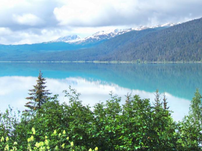 View of Kenai Fjords National Park.